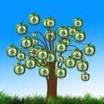 Když při sledování videa na YouTube ušetříte čas, budete mít více prostoru vydělávat a na vašem podnikatelském stromě vyrostou peníze