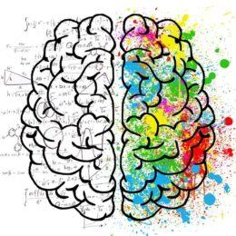 Mozek může být kreativní, nebo analytický, nápady přicházejí v kreativní fázi